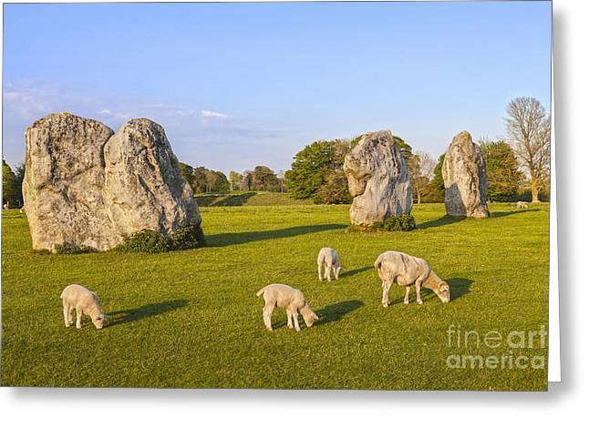 Henge Greeting Cards - Standing Stones and Sheep Avebury Greeting Card by Colin and Linda McKie