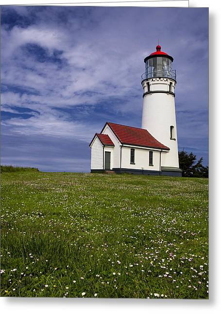 Standing Tall Greeting Card by Andrew Soundarajan
