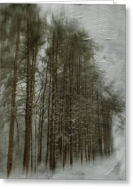 Snow Tree Prints Greeting Cards - Standing Tall Greeting Card by Kathy Jennings