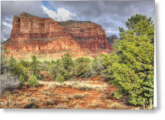 Photographs With Red. Greeting Cards - Standing Tall Greeting Card by Wendy Elliott