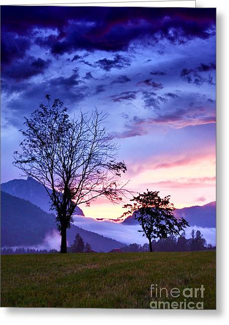 Summer Storm Greeting Cards - Standing Tall...and Growing Greeting Card by Sabine Jacobs
