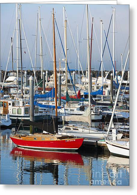 Marina Greeting Cards - Standout Greeting Card by Mike  Dawson