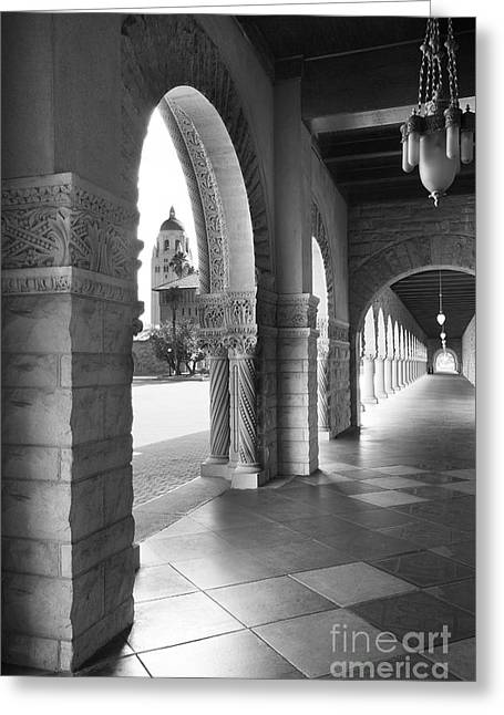 Recently Sold -  - Special Occasion Greeting Cards - Stanford University Main Quad Walkway Greeting Card by University Icons