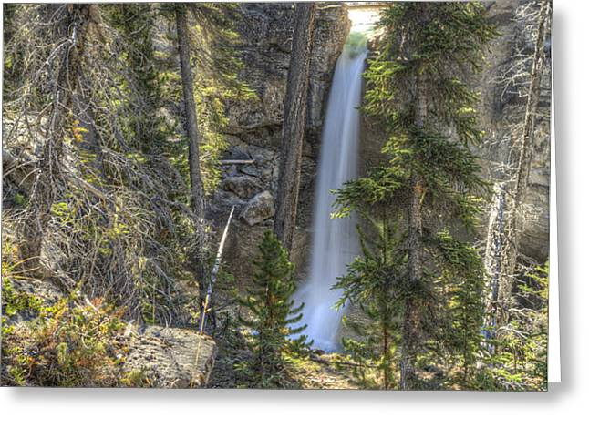 Stanley Falls at Beauty Creek Greeting Card by Brian Stamm