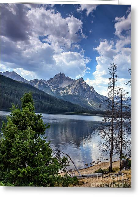 Haybale Greeting Cards - Stanley Lake View Greeting Card by Robert Bales
