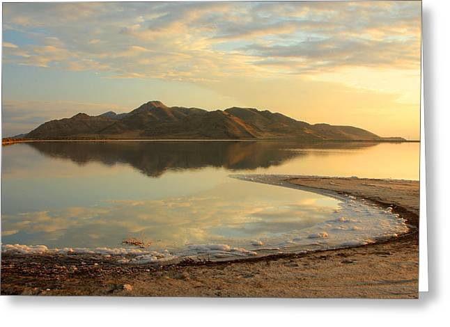 Desert Lake Greeting Cards - Stansbury island on the Great Salt Lake Greeting Card by Johnny Adolphson