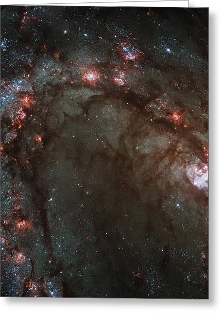 Psychedelic Space Art Greeting Cards - Star Birth  Greeting Card by The  Vault - Jennifer Rondinelli Reilly