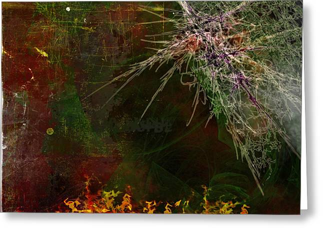 Home Greeting Cards - Star Burst Greeting Card by Christopher Gaston