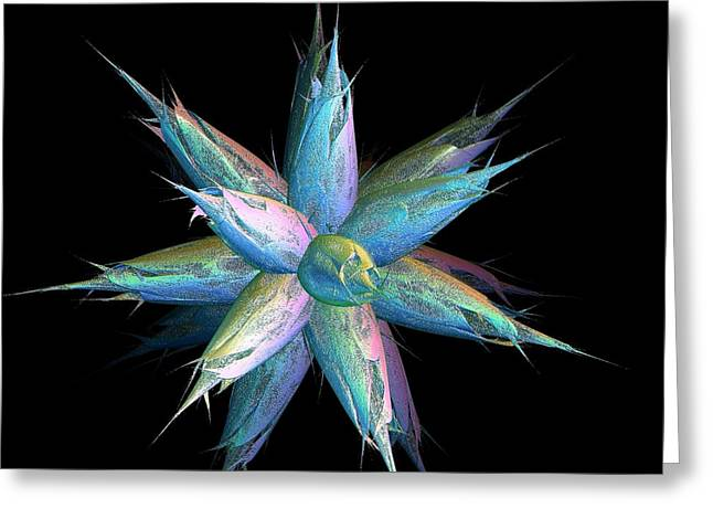 Google Digital Greeting Cards - Star Burst of Colored Flower Buds Greeting Card by Gail Matthews