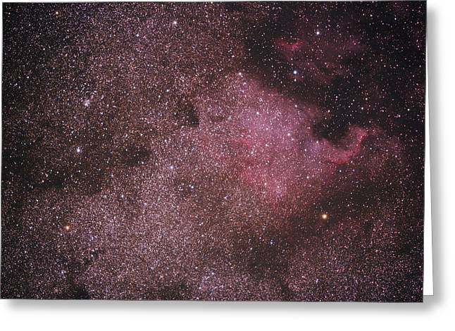 Astro Images Greeting Cards - Star Field Greeting Card by Houston Haynes