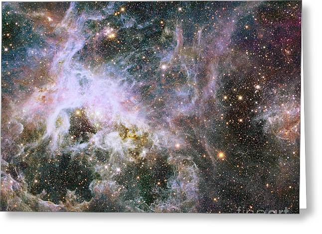 Star Formation In The Tarantula Nebula Greeting Card by Stocktrek Images