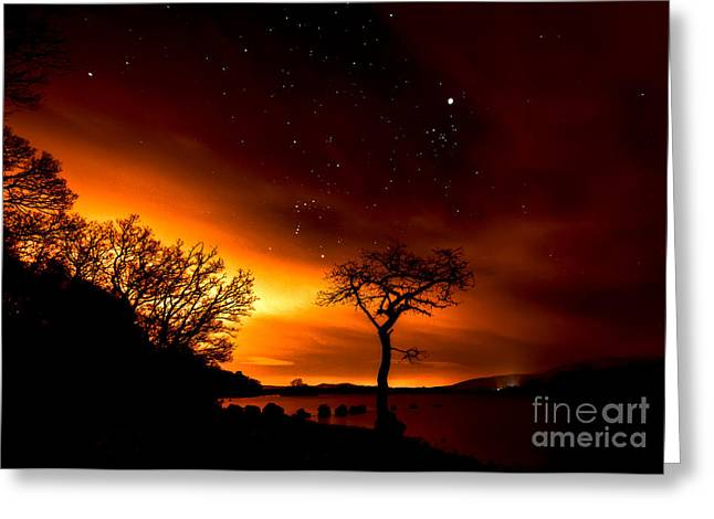 Geminids Greeting Cards - Star Gazin Greeting Card by Roddy Atkinson