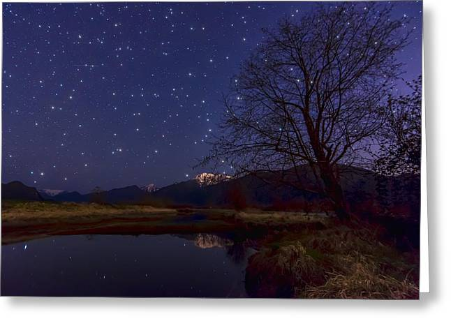 Constellations Greeting Cards - Star Light Star Bright Greeting Card by James Wheeler