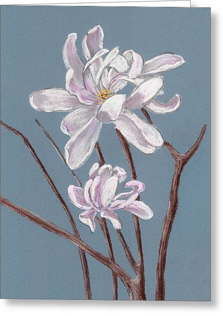 Valentine Pastels Greeting Cards - Star Magnolia  Greeting Card by Anastasiya Malakhova