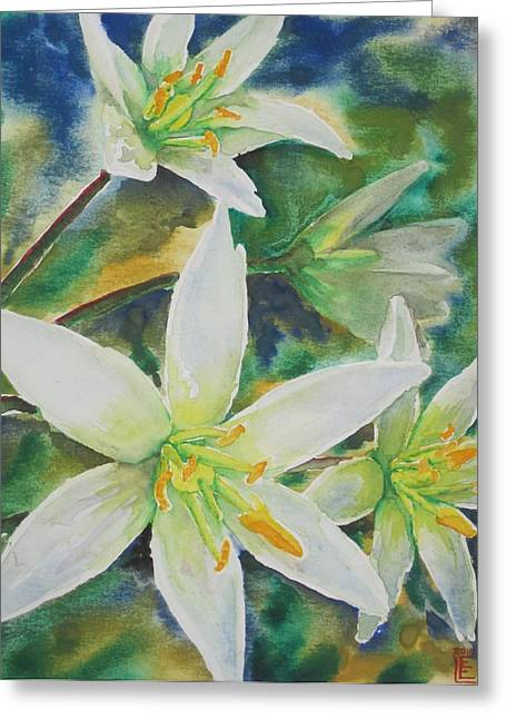 Star Of Bethlehem Paintings Greeting Cards - Star of Bethlehem Greeting Card by Bryan Lee