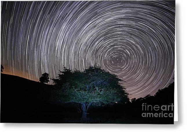 Star Safari Trails Greeting Card by Robert Loe