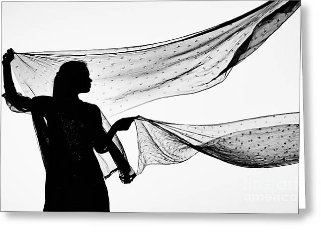 Black Veil Greeting Cards - Star Shawls in the Wind Greeting Card by Tim Gainey