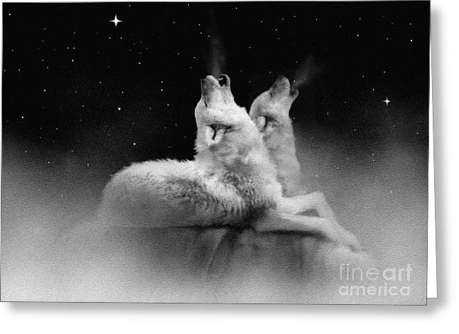 Howling Greeting Cards - Star Talkers Greeting Card by Robert Foster