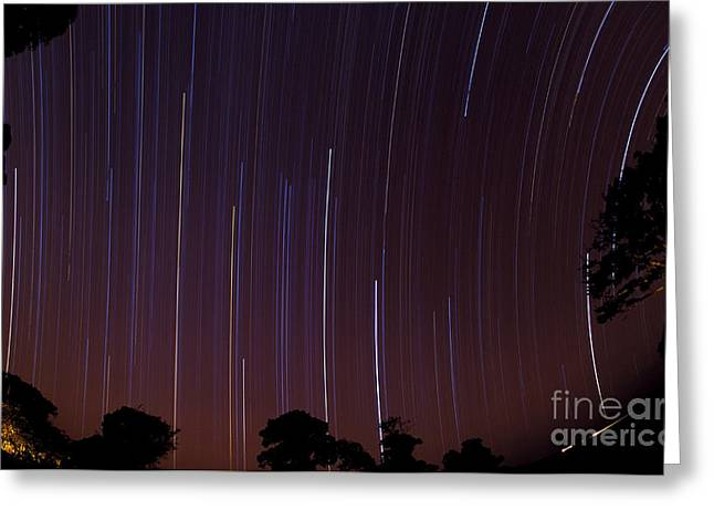 Outerspace Greeting Cards - Star Trails Over Masai Mara, Kenya Greeting Card by Gregory G. Dimijian, M.D.