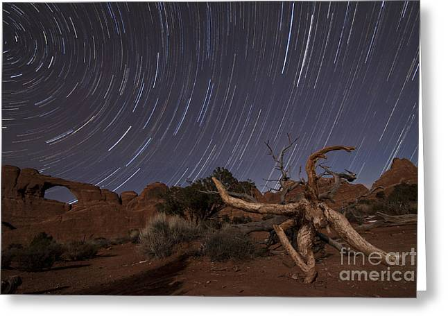 Skyline Arch Greeting Cards - Star Trails Over Skyline Arch At Arches Greeting Card by Dan Barr