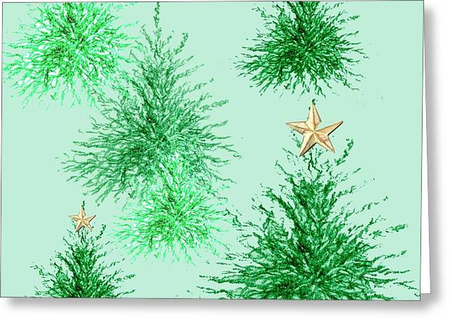Fir Trees Greeting Cards - Star Trees Greeting Card by Anna Platts