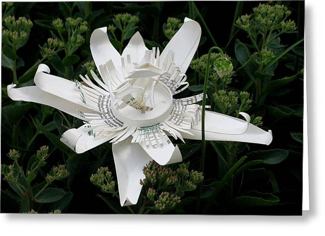 Floral Sculptures Greeting Cards - Starbucks coffee cup passion flower Greeting Card by Alfred Ng