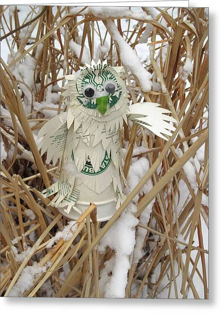 Winters Sculptures Greeting Cards - Starbucks Snowy Owl With Firsh Snow Greeting Card by Alfred Ng