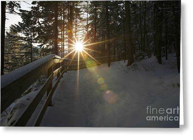 Peaceful Scene Greeting Cards - Starburst Sun Shine - Franconia Notch State Park New Hampshire  Greeting Card by Erin Paul Donovan