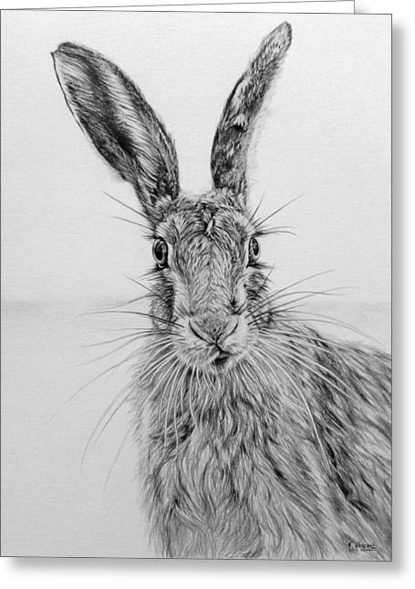 March Hare Greeting Cards - Stare of the Hare Greeting Card by Frances Vincent