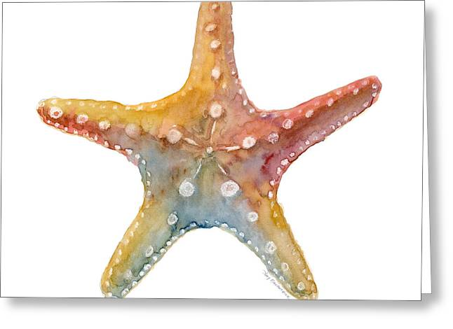 Shell Fish Greeting Cards - Starfish Greeting Card by Amy Kirkpatrick