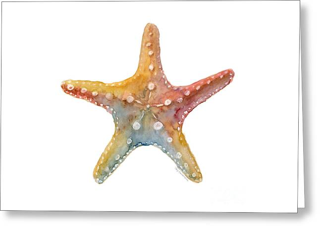 Starfish Greeting Card by Amy Kirkpatrick