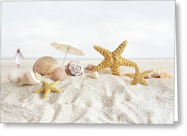 Starfish and seashells  at the beach Greeting Card by Sandra Cunningham