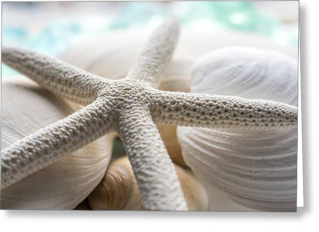 Shell Texture Greeting Cards - Starfish and Seashells Greeting Card by Terry DeLuco