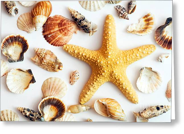 Shell Texture Greeting Cards - Starfish and shells Greeting Card by Michal Bednarek