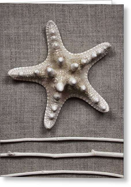 Shell Texture Greeting Cards - Starfish and Sticks Greeting Card by Carol Leigh