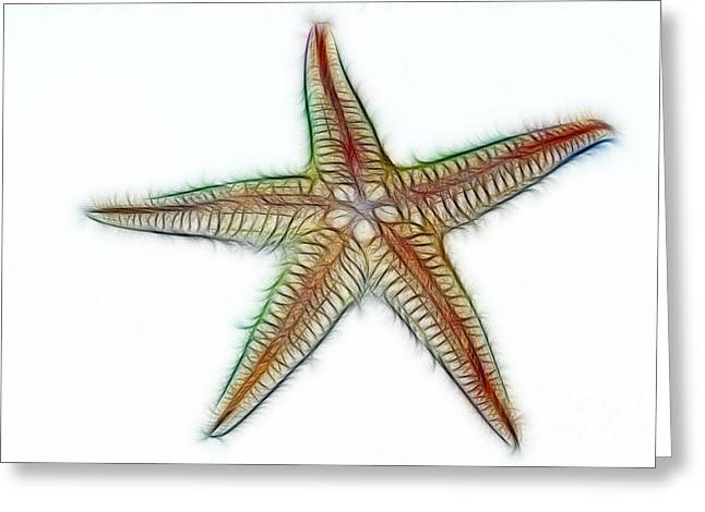 Shell Texture Greeting Cards - Starfish Art 2 Greeting Card by Kaye Menner