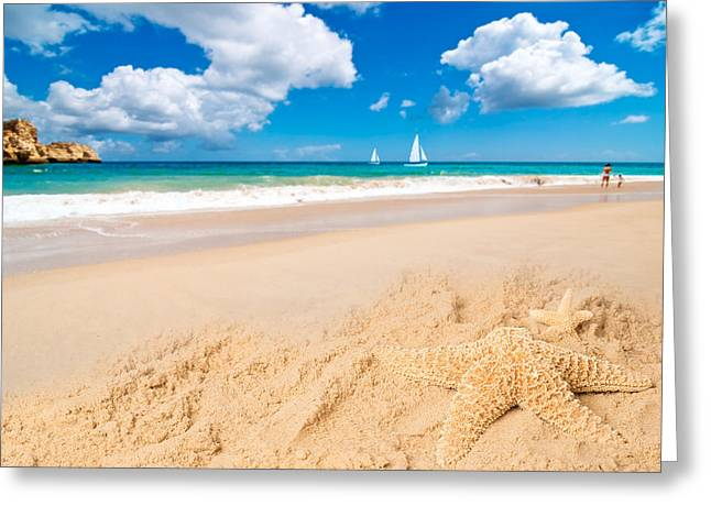 Golden Sand Greeting Cards - Starfish Greeting Card by Amanda And Christopher Elwell