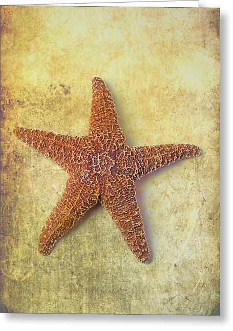 Orange Starfish Greeting Cards - Starfish Graphic Greeting Card by Garry Gay