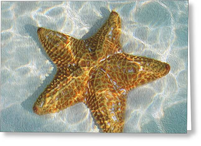 California Beaches Mixed Media Greeting Cards - Starfish Greeting Card by Jon Neidert