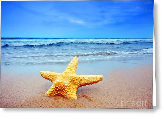 Starfish Greeting Cards - Starfish on a beach   Greeting Card by Michal Bednarek