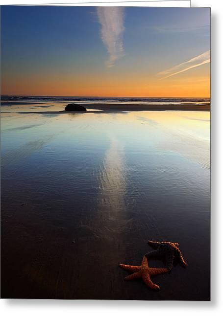 Cannon Beach Greeting Cards - Starfish Sunset Greeting Card by Mike  Dawson