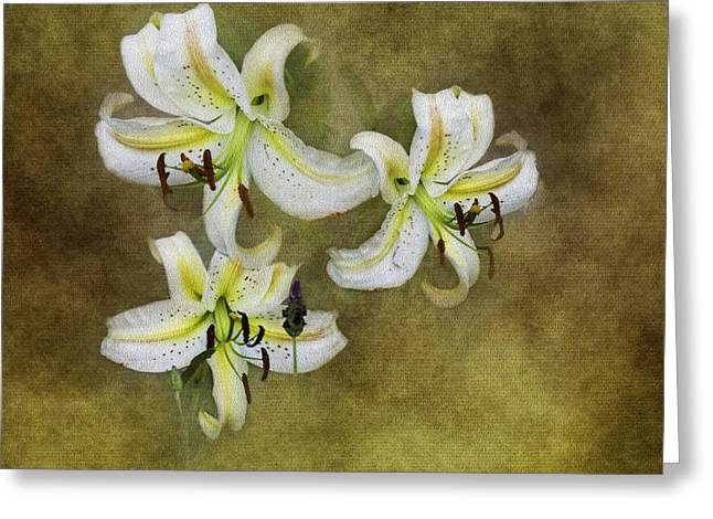 Stargazer Lily Greeting Cards - Stargazer Lilies and Some Sprigs of Lavender Greeting Card by Diane Schuster