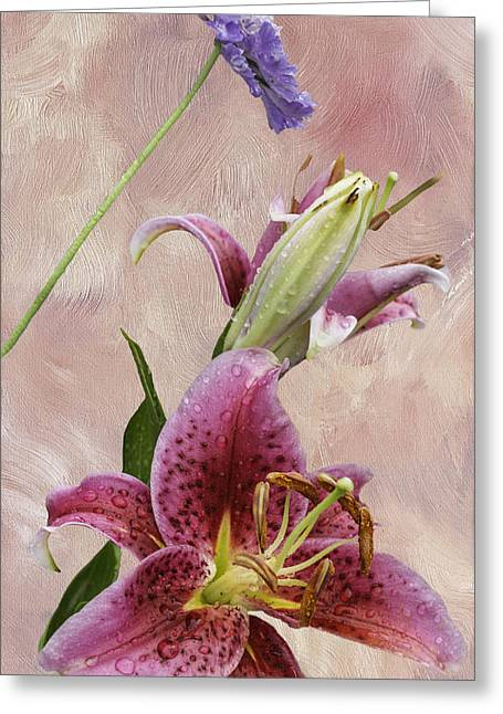 Pin Cushion Greeting Cards - Stargazer Lily and Pincushion Flower Greeting Card by Diane Schuster