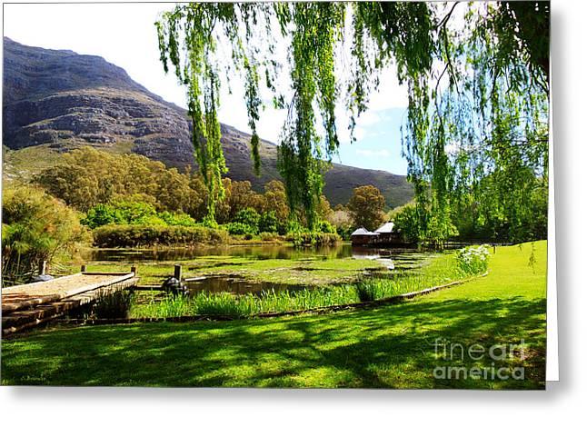 Stellenbosch Greeting Cards - Stark Conde Wine estate Stellenbosch South Africa Greeting Card by Charl Bruwer