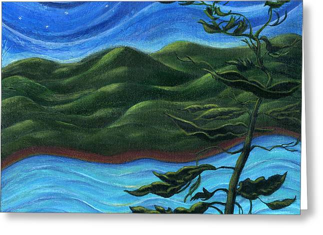 Starry Night at Algonquin Park Greeting Card by Catherine Howard