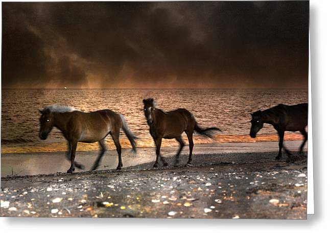 Gaiting Greeting Cards - Starry Night Beach Horses Greeting Card by Betsy C  Knapp