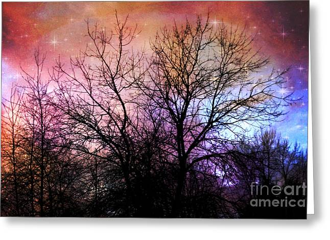 Bare Trees Greeting Cards - Starry Night Greeting Card by Sylvia Cook