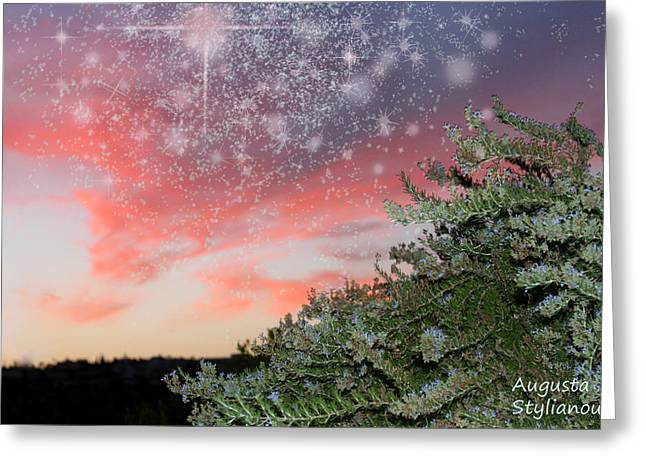 Starry Sunset Greeting Card by Augusta Stylianou