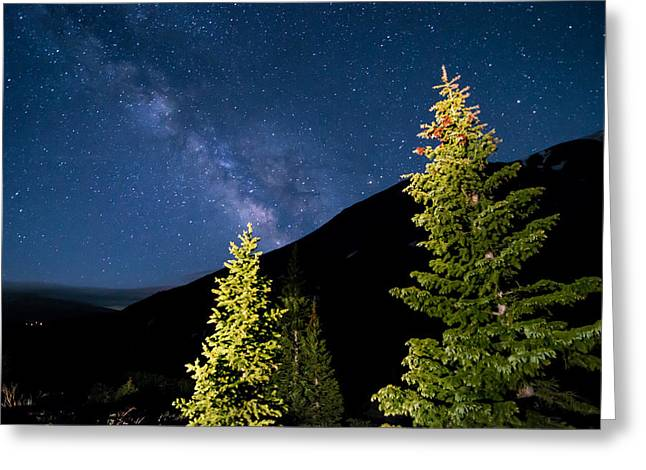 Hike Greeting Cards - Stars Above Trees Greeting Card by Michael J Bauer