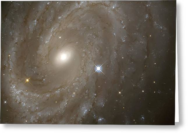 Gazer Greeting Cards - Stars and Spiral Galaxy Greeting Card by The  Vault - Jennifer Rondinelli Reilly